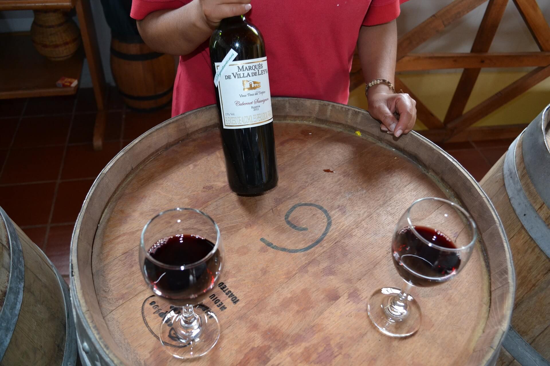Les tanins du vin, c'est quoi ? Définition et explications