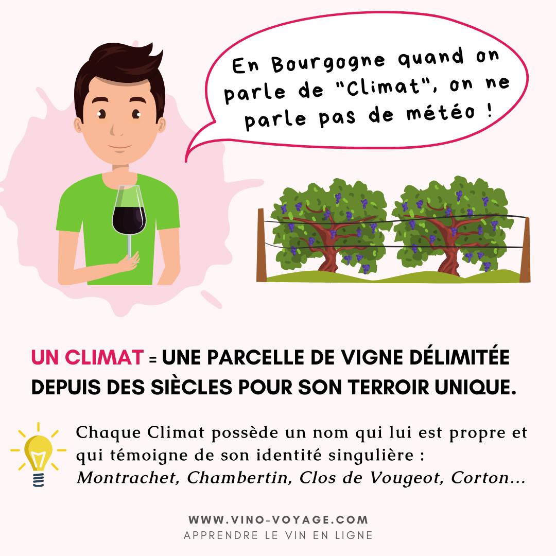 Climats de Bourgogne définition