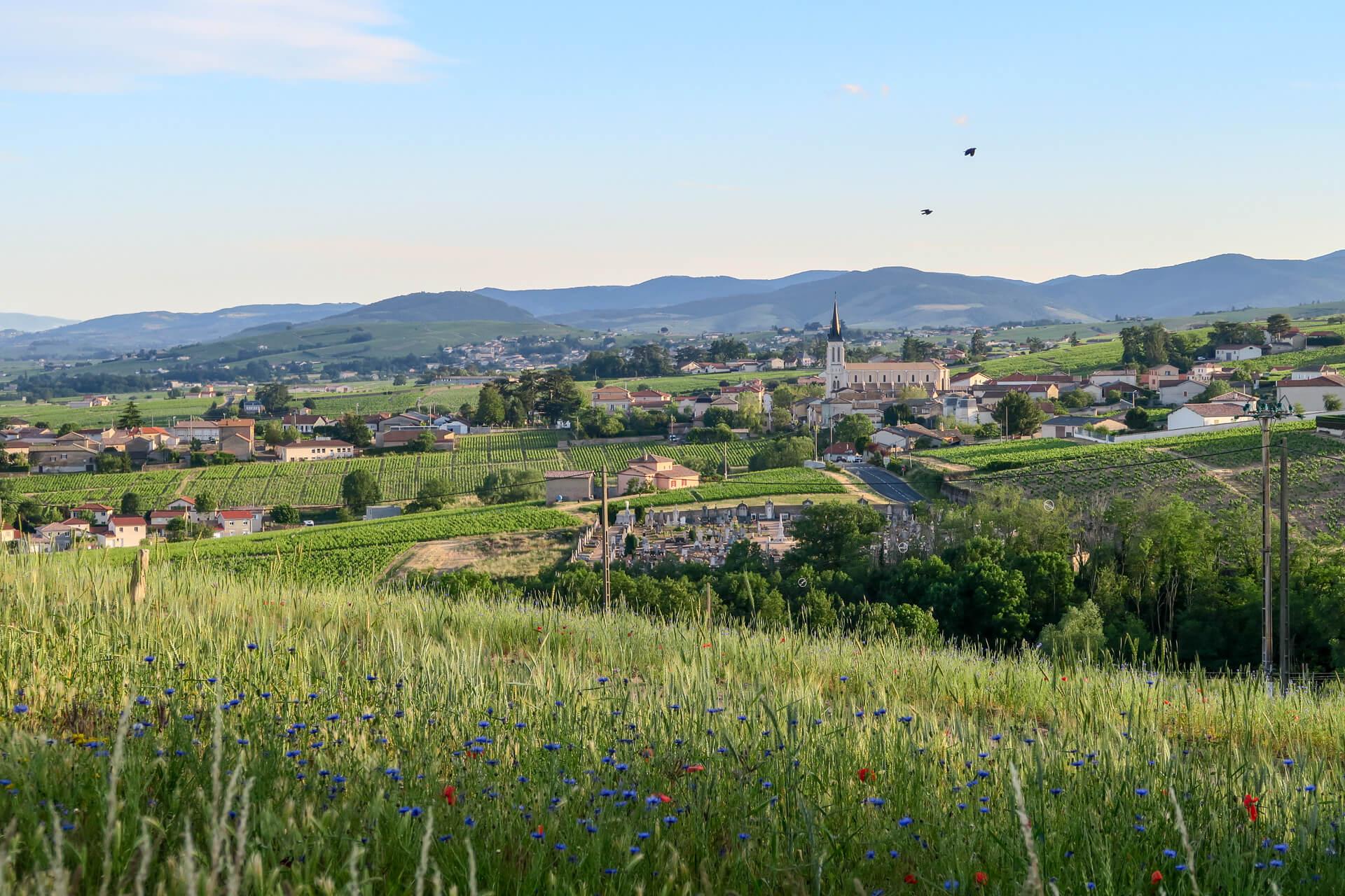 Bienvenue en Beaujonomie : week-end vin et gastronomie en Beaujolais