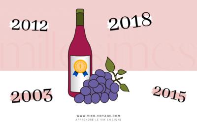 Millésime du vin : pourquoi certains millésimes sont meilleurs ?