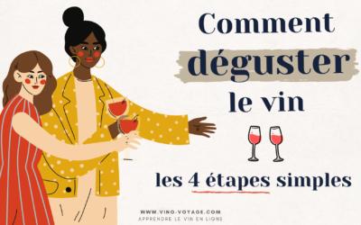 Comment déguster un vin ? Les 4 étapes simples de la dégustation